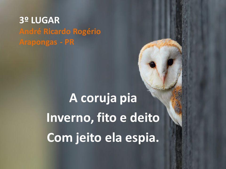3º LUGAR André Ricardo Rogério Arapongas - PR