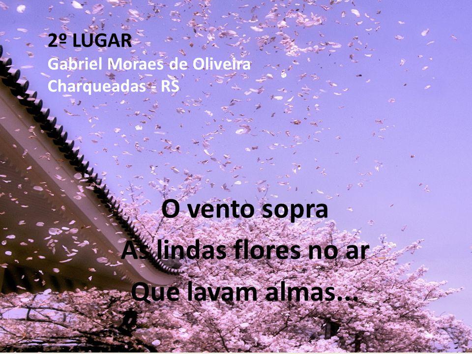 2º LUGAR Gabriel Moraes de Oliveira Charqueadas - RS