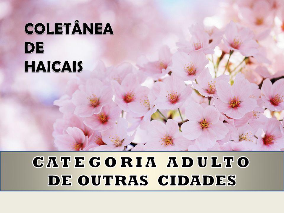 COLETÂNEA DE HAICAIS CATEGORIA ADULTO DE OUTRAS CIDADES