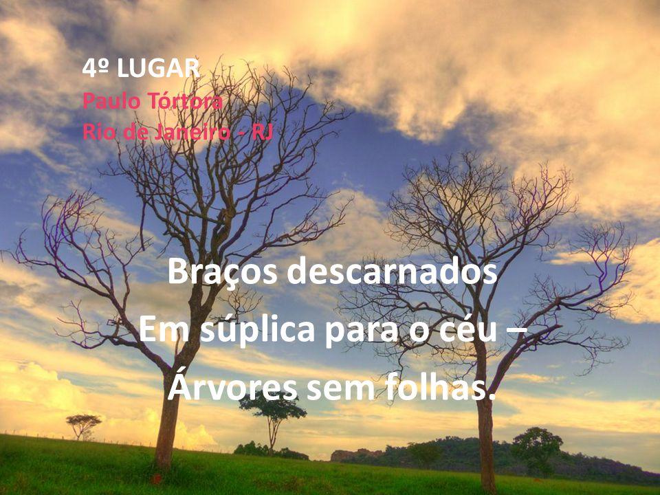 4º LUGAR Paulo Tórtora Rio de Janeiro - RJ
