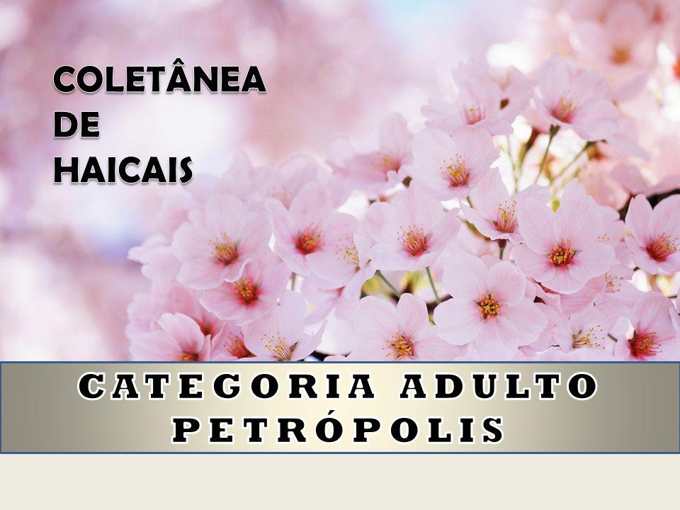 COLETÂNEA DE HAICAIS CATEGORIA ADULTO PETRÓPOLIS