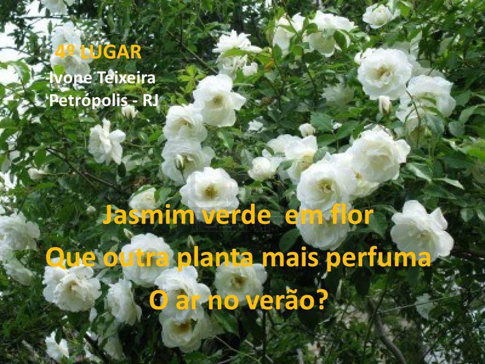 4º LUGAR Ivone Teixeira Petrópolis - RJ