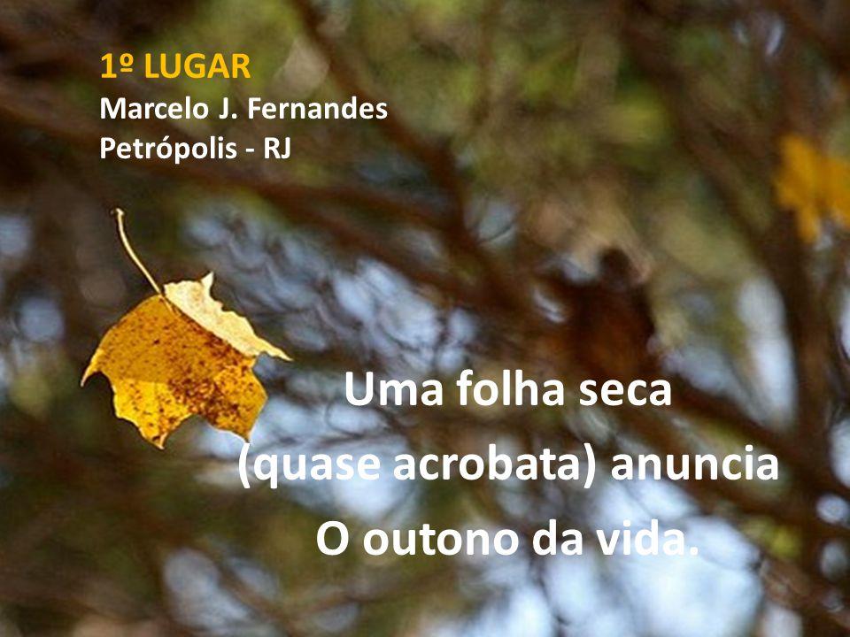 1º LUGAR Marcelo J. Fernandes Petrópolis - RJ