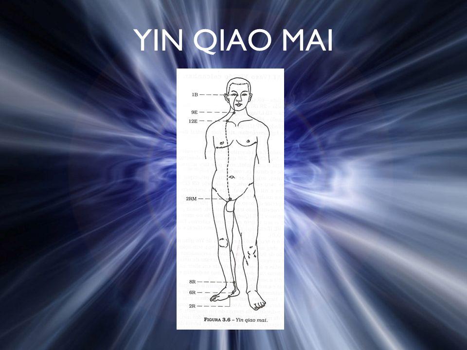 YIN QIAO MAI