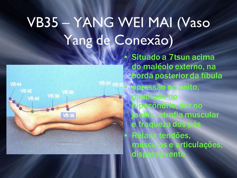 VB35 – YANG WEI MAI (Vaso Yang de Conexão)