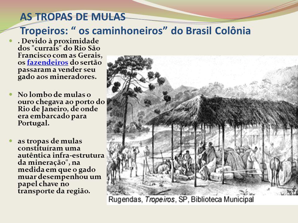 AS TROPAS DE MULAS Tropeiros: os caminhoneiros do Brasil Colônia