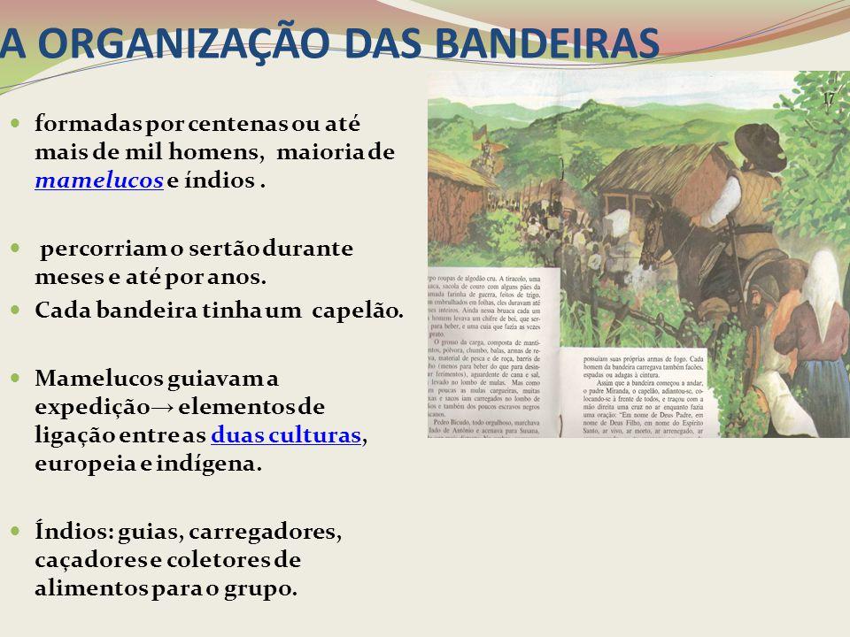 A ORGANIZAÇÃO DAS BANDEIRAS
