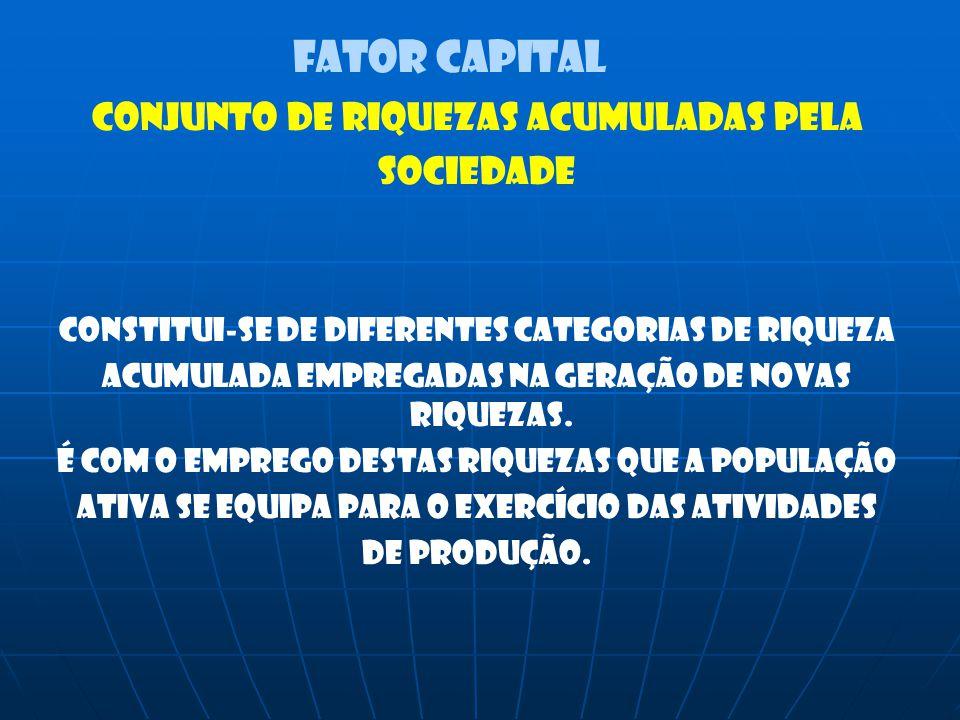 FATOR CAPITAL CONJUNTO DE RIQUEZAS ACUMULADAS PELA SOCIEDADE