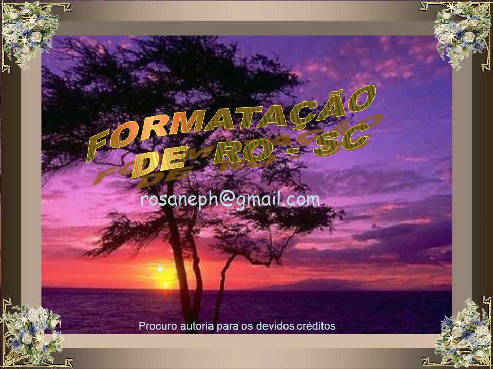 FORMATAÇÃO DE RO - SC rosaneph@gmail.com