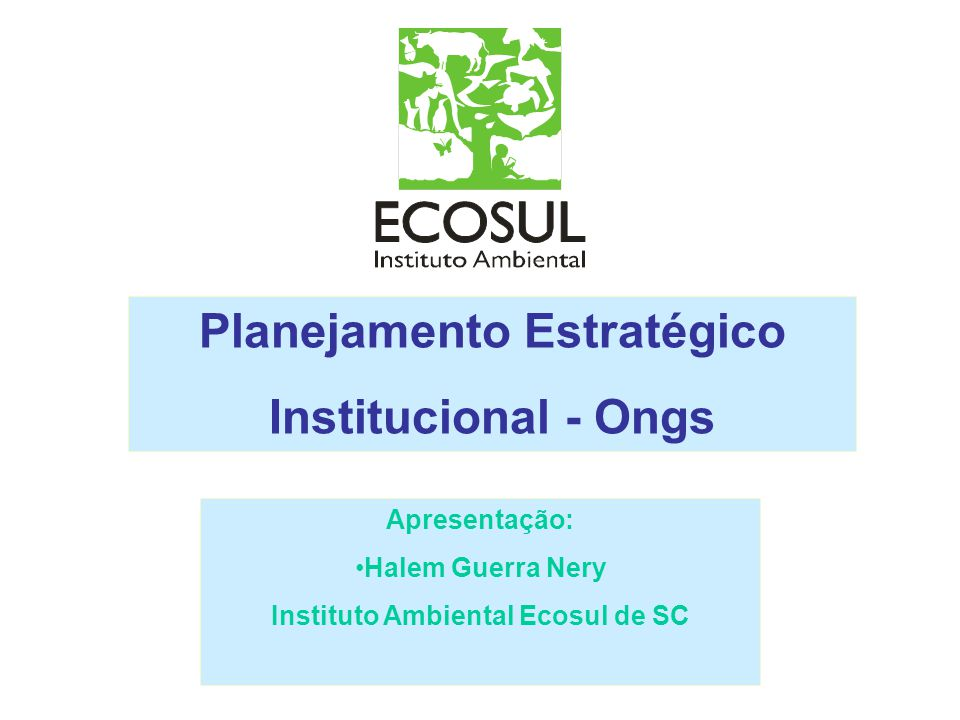 Planejamento Estratégico Instituto Ambiental Ecosul de SC