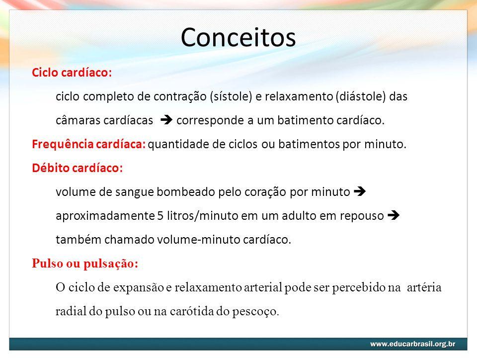 Conceitos Ciclo cardíaco:
