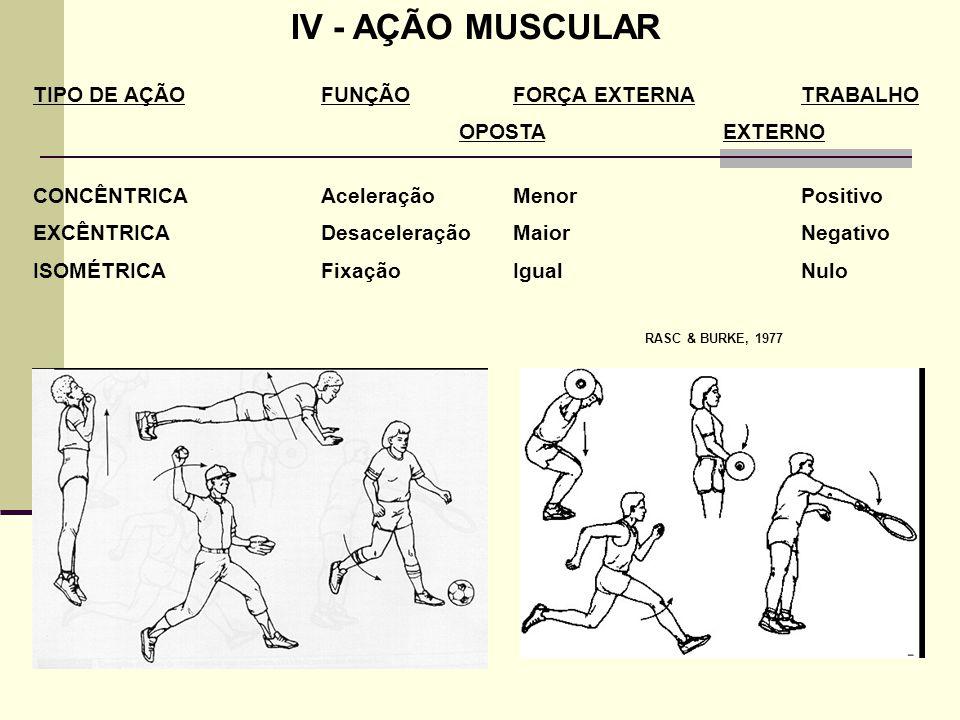 IV - AÇÃO MUSCULAR TIPO DE AÇÃO FUNÇÃO FORÇA EXTERNA TRABALHO