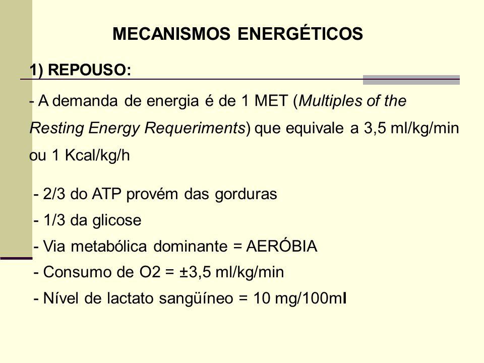 MECANISMOS ENERGÉTICOS