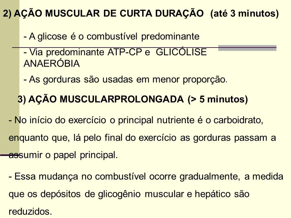 2) AÇÃO MUSCULAR DE CURTA DURAÇÃO (até 3 minutos)