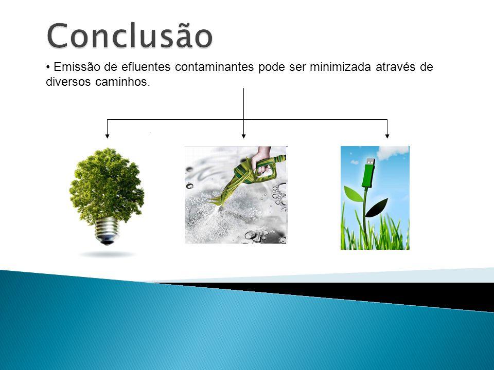 Conclusão Emissão de efluentes contaminantes pode ser minimizada através de diversos caminhos.