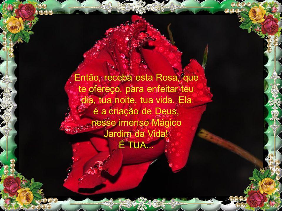 Então, receba esta Rosa, que te ofereço, para enfeitar teu dia, tua noite, tua vida. Ela é a criação de Deus, nesse imenso Mágico Jardim da Vida!