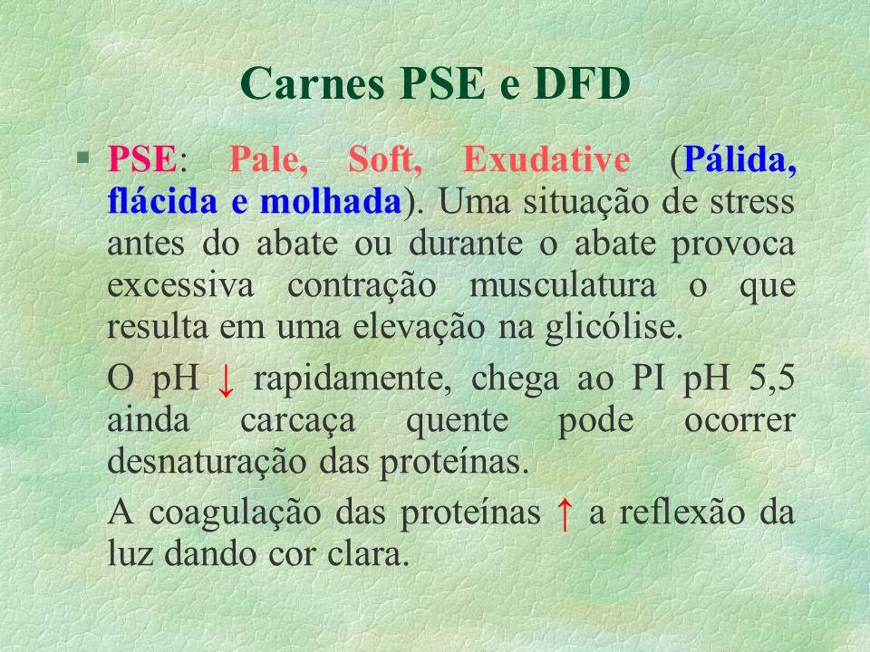 Carnes PSE e DFD