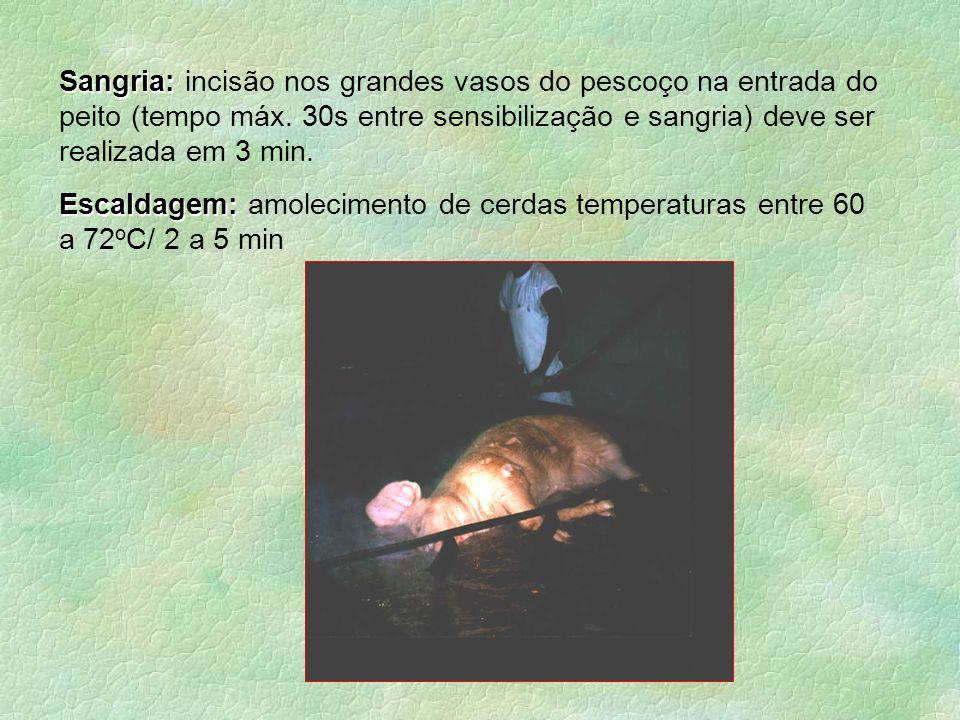 Sangria: incisão nos grandes vasos do pescoço na entrada do peito (tempo máx. 30s entre sensibilização e sangria) deve ser realizada em 3 min.