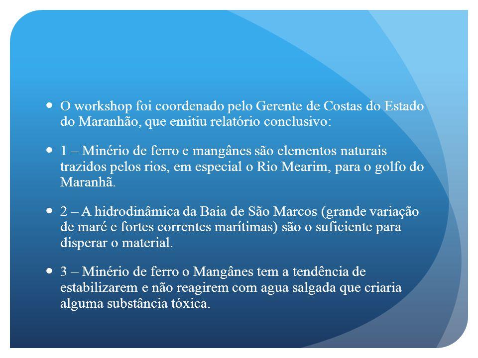 O workshop foi coordenado pelo Gerente de Costas do Estado do Maranhão, que emitiu relatório conclusivo: