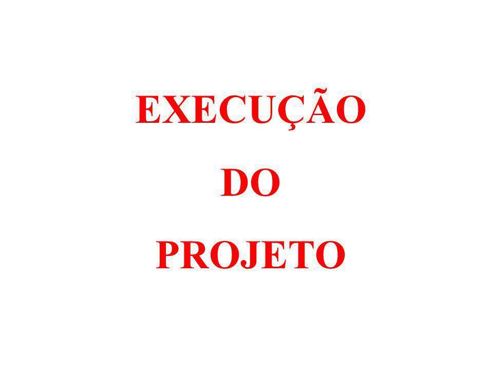 EXECUÇÃO DO PROJETO