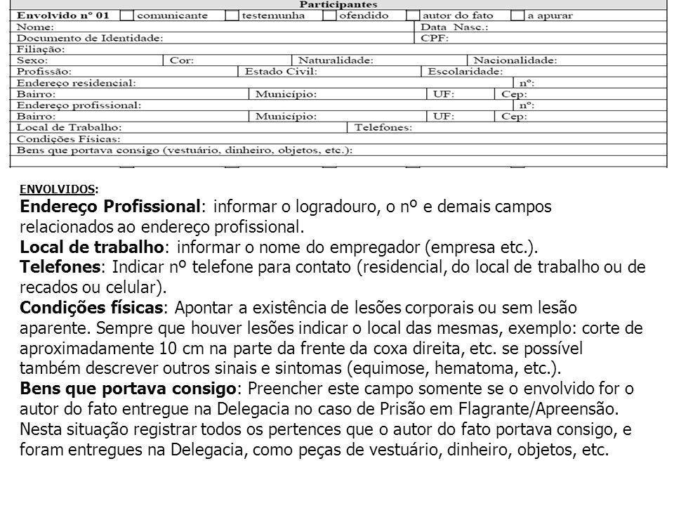 Local de trabalho: informar o nome do empregador (empresa etc.).