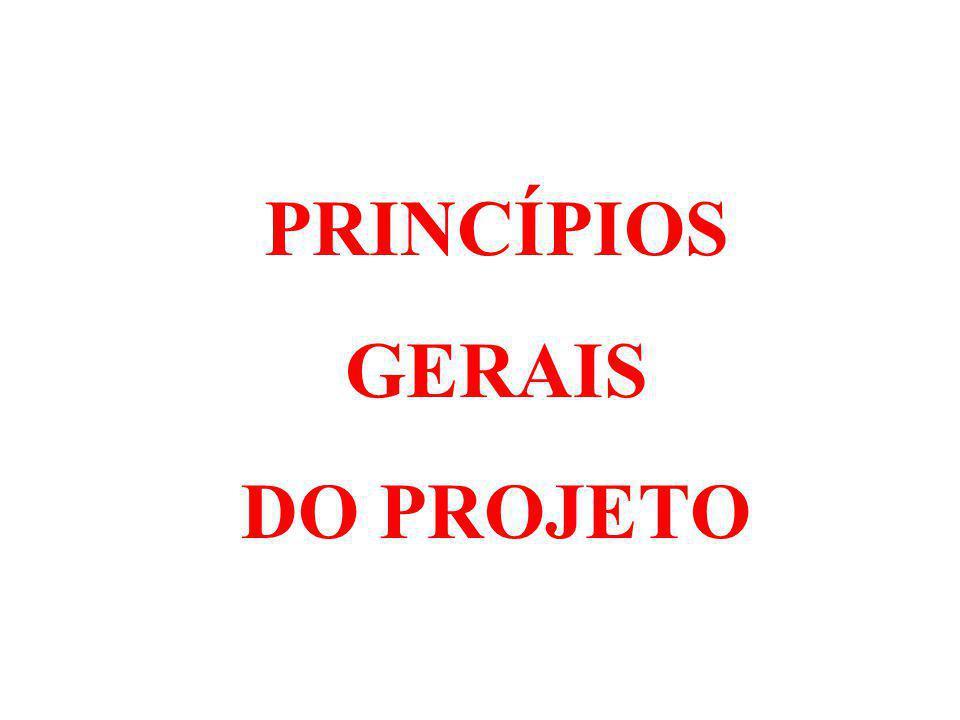 PRINCÍPIOS GERAIS DO PROJETO