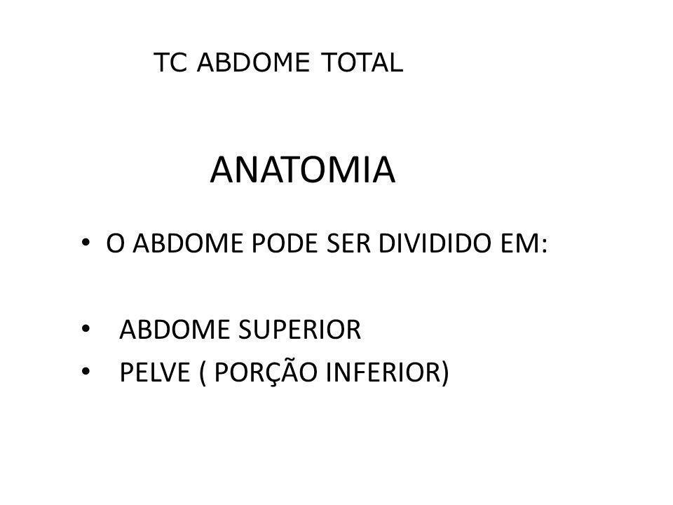 ANATOMIA O ABDOME PODE SER DIVIDIDO EM: ABDOME SUPERIOR