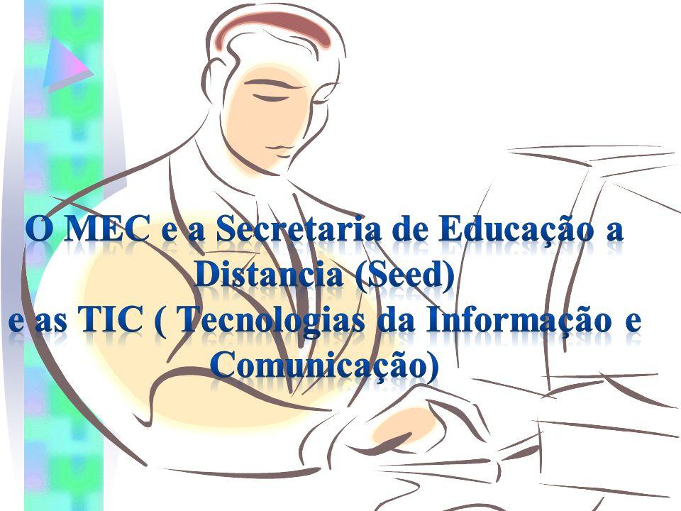 O MEC e a Secretaria de Educação a Distancia (Seed) e as TIC ( Tecnologias da Informação e Comunicação)