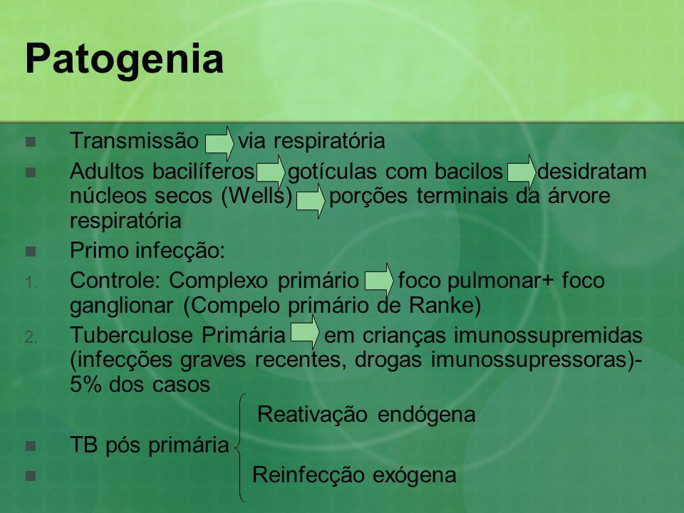 Patogenia Transmissão via respiratória