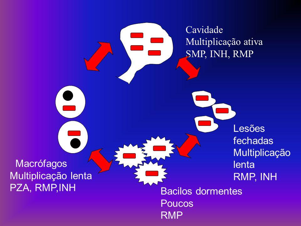 Cavidade Multiplicação ativa. SMP, INH, RMP. Lesões fechadas. Multiplicação lenta. RMP, INH. Macrófagos.