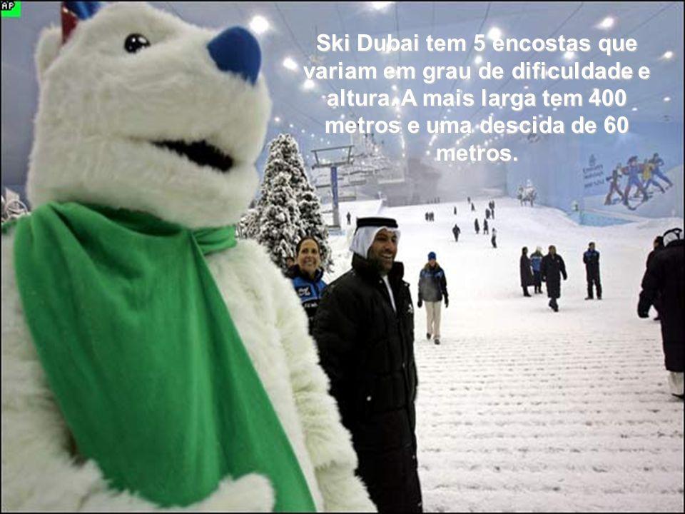 Ski Dubai tem 5 encostas que variam em grau de dificuldade e altura