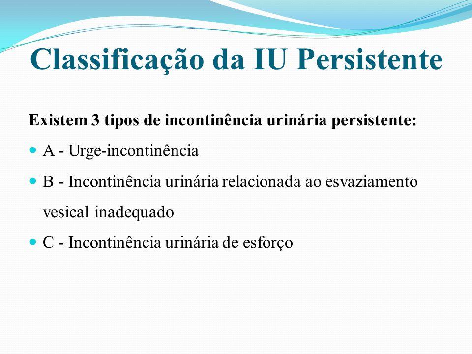 Classificação da IU Persistente