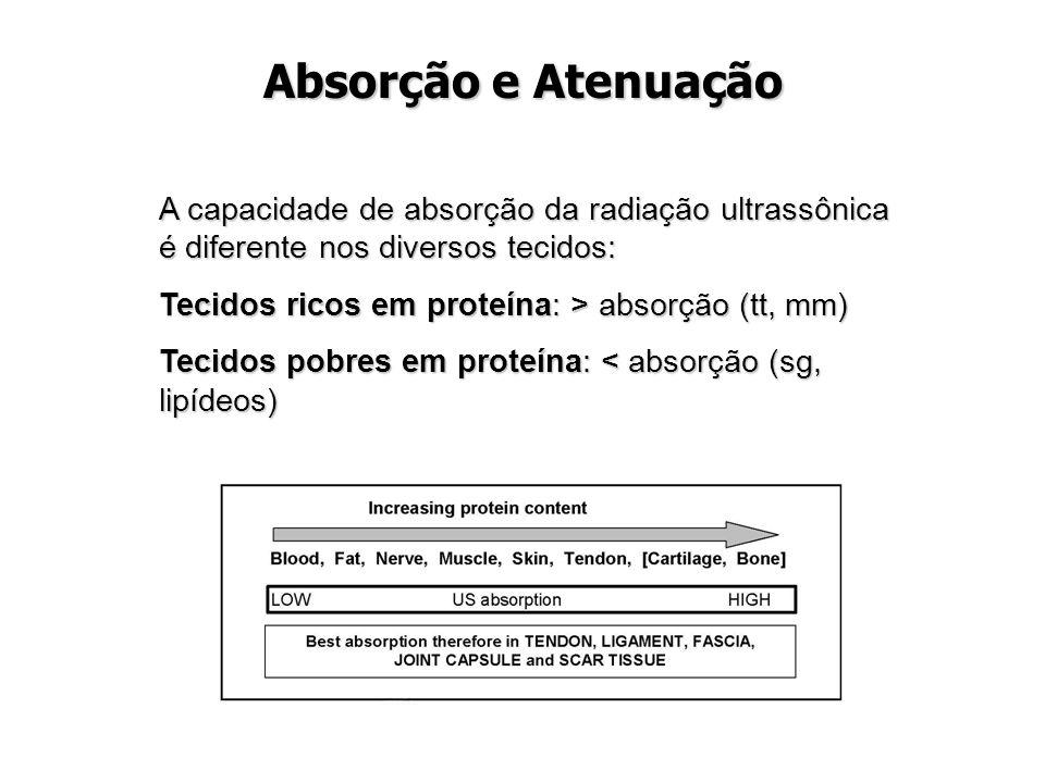 Absorção e Atenuação A capacidade de absorção da radiação ultrassônica é diferente nos diversos tecidos: