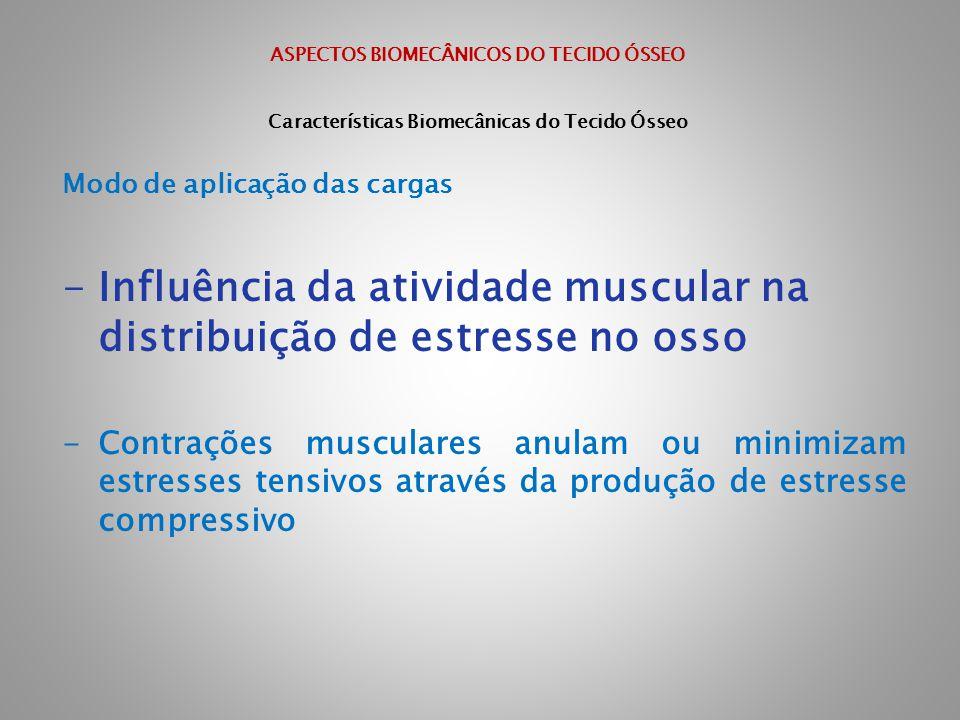 Influência da atividade muscular na distribuição de estresse no osso
