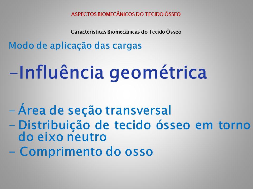Influência geométrica