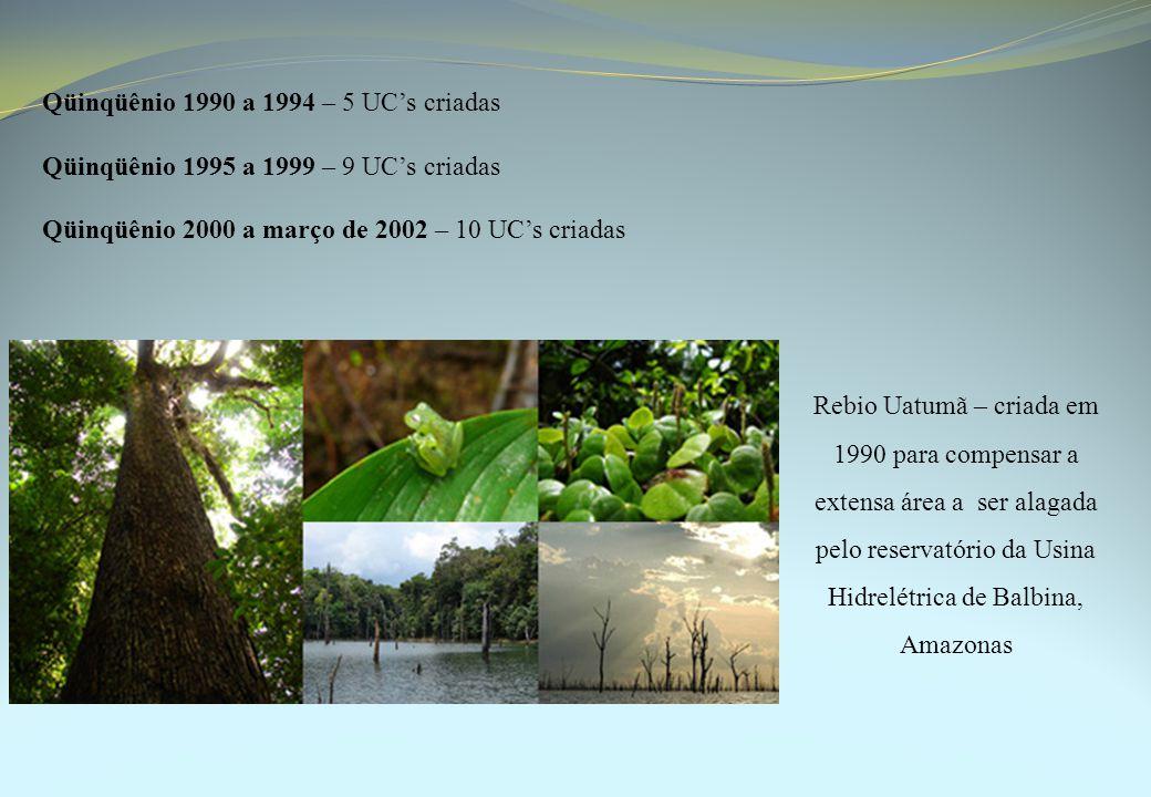 Qüinqüênio 1990 a 1994 – 5 UC's criadas