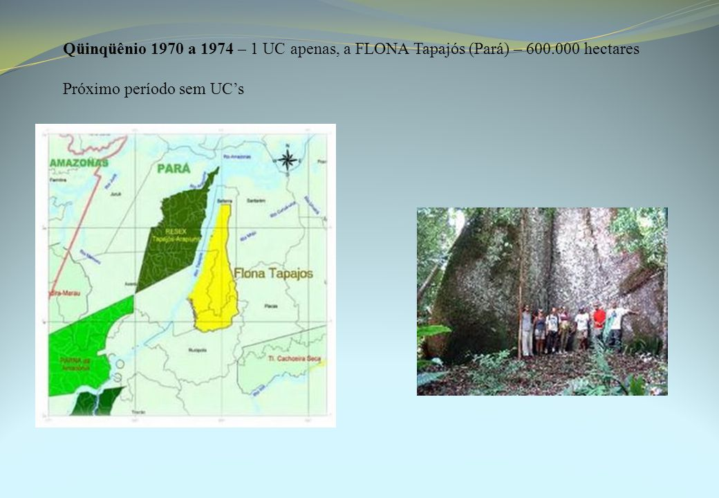 Qüinqüênio 1970 a 1974 – 1 UC apenas, a FLONA Tapajós (Pará) – 600