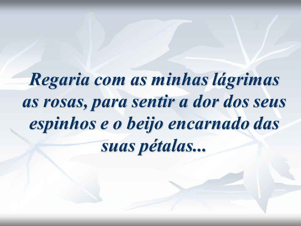 Regaria com as minhas lágrimas as rosas, para sentir a dor dos seus espinhos e o beijo encarnado das suas pétalas...
