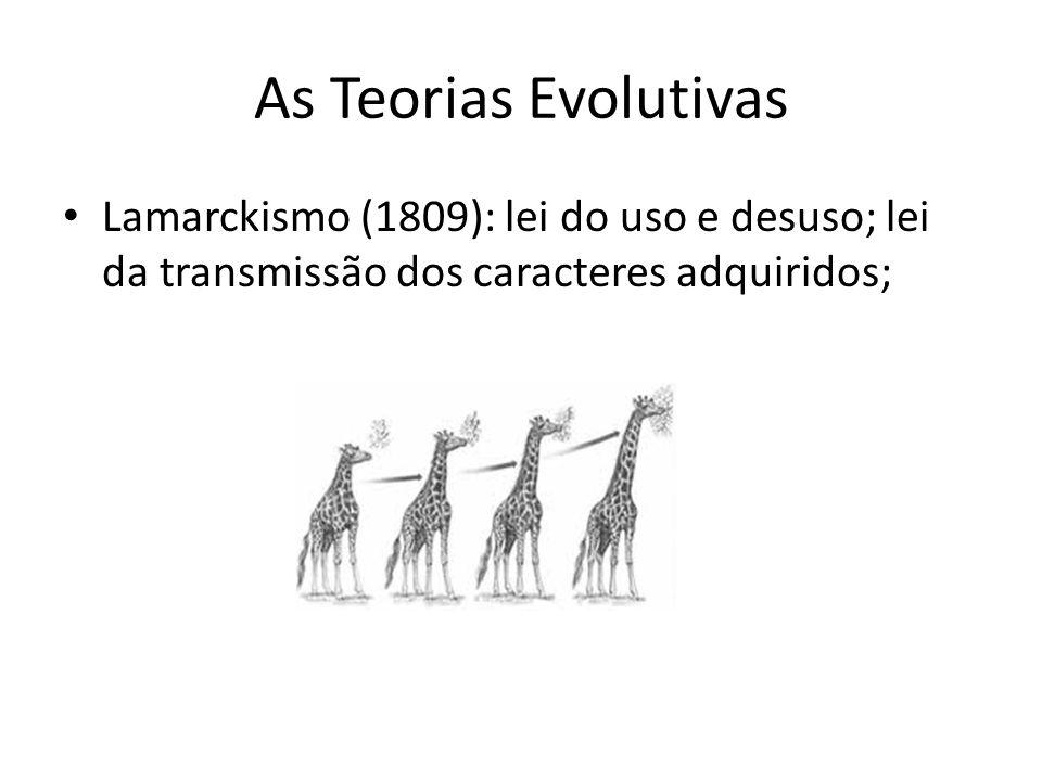 As Teorias Evolutivas Lamarckismo (1809): lei do uso e desuso; lei da transmissão dos caracteres adquiridos;