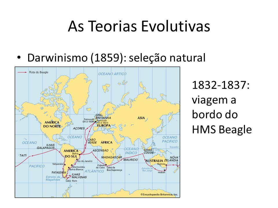 As Teorias Evolutivas Darwinismo (1859): seleção natural
