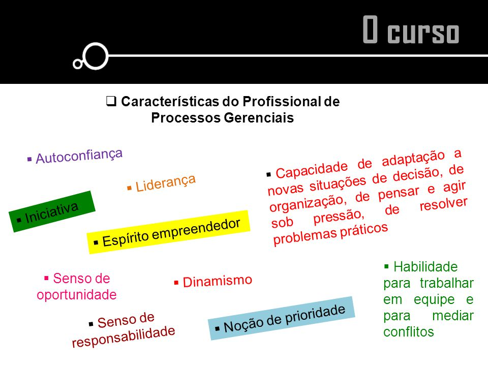 Características do Profissional de Processos Gerenciais