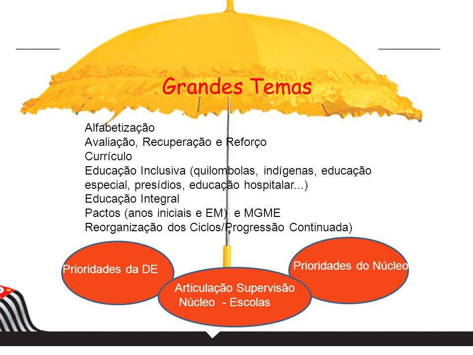 Grandes Temas Alfabetização Avaliação, Recuperação e Reforço Currículo