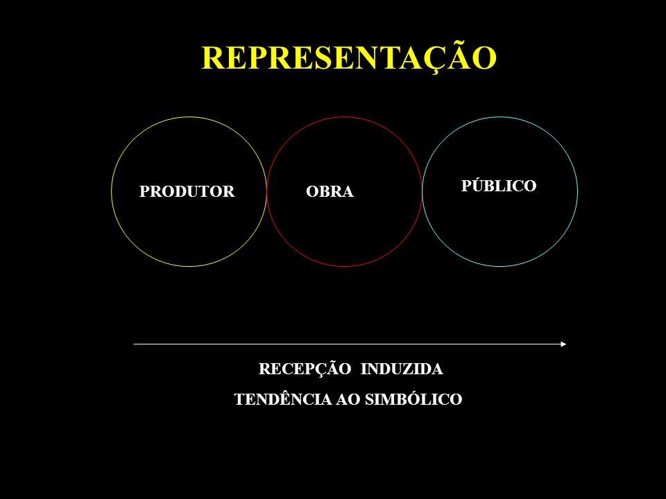 REPRESENTAÇÃO PÚBLICO PRODUTOR OBRA RECEPÇÃO INDUZIDA