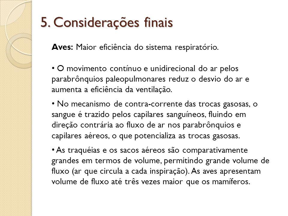 5. Considerações finais Aves: Maior eficiência do sistema respiratório.