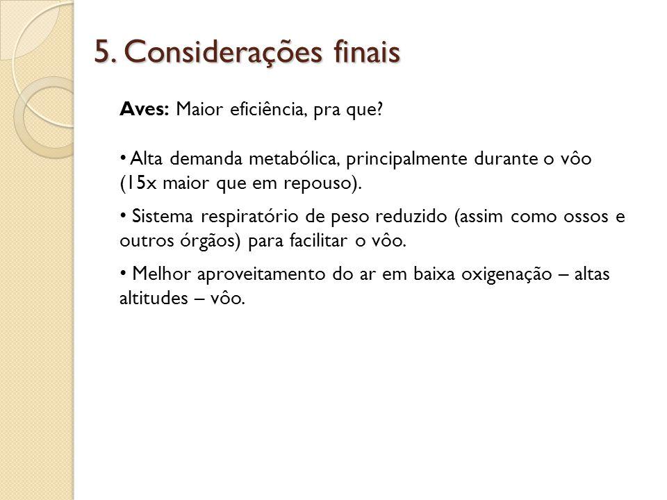5. Considerações finais Aves: Maior eficiência, pra que
