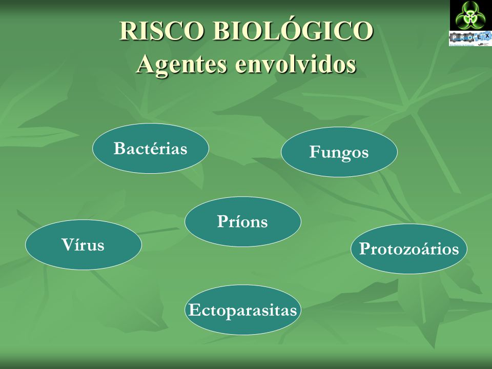 RISCO BIOLÓGICO Agentes envolvidos