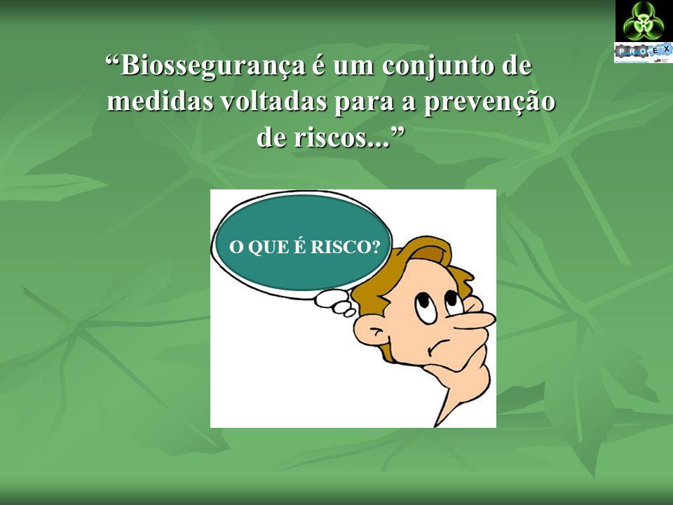 Biossegurança é um conjunto de medidas voltadas para a prevenção de riscos...