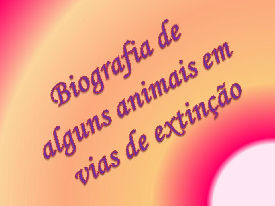 Biografia de alguns animais em vias de extinção