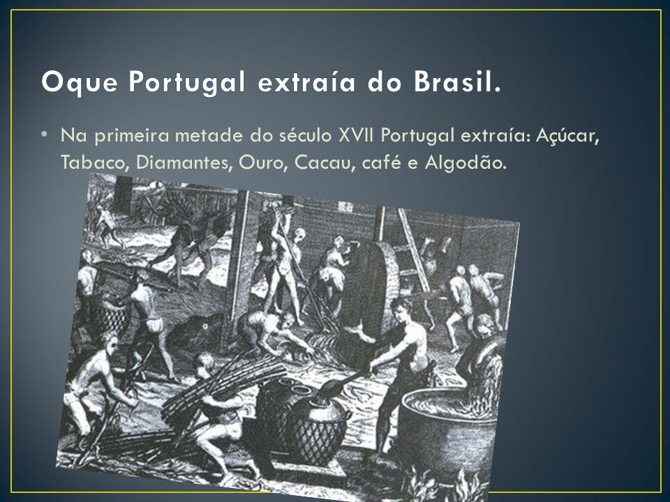 Oque Portugal extraía do Brasil.