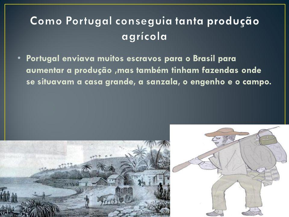 Como Portugal conseguia tanta produção agrícola